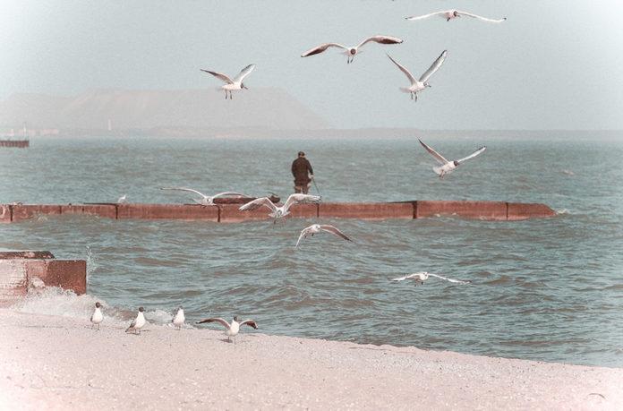 прогулка на море